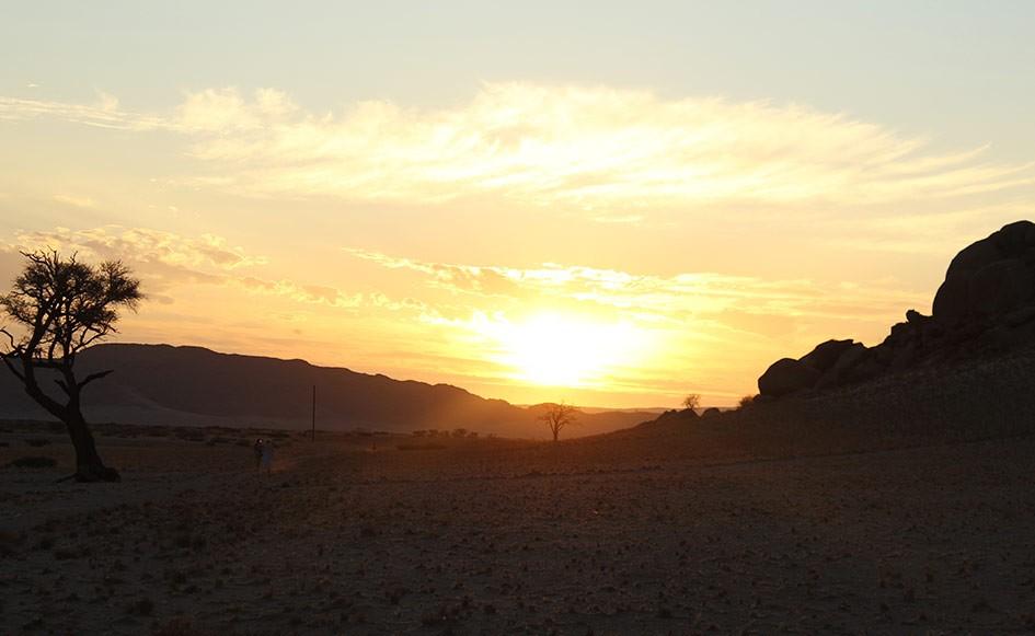 blog_coco_desertcamp_04