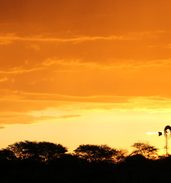 Namibia – spontaner Trip Richtung Norden