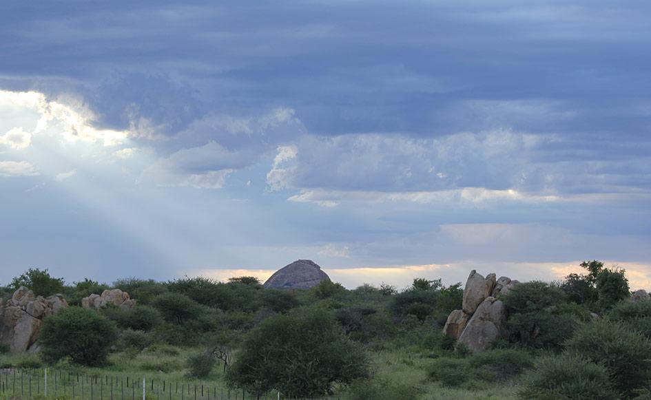 blog_coco_waterbergplateau_namibia_23