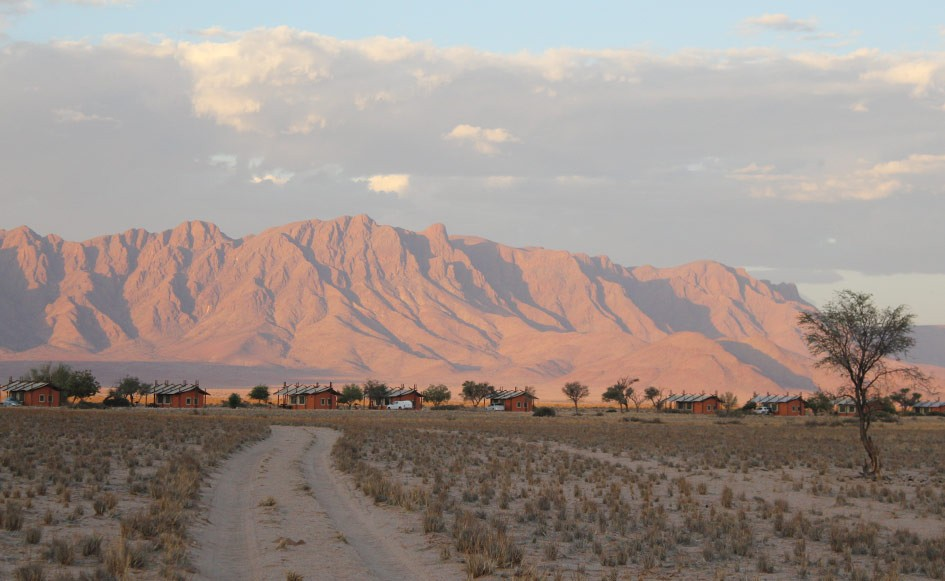 blog_coco_desertcamp_03