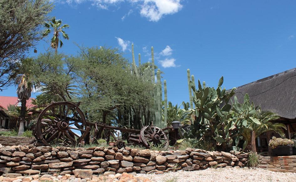 blog_coco_waterbergplateau_namibia_05