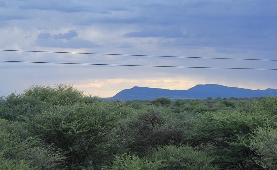 blog_coco_waterbergplateau_namibia_22