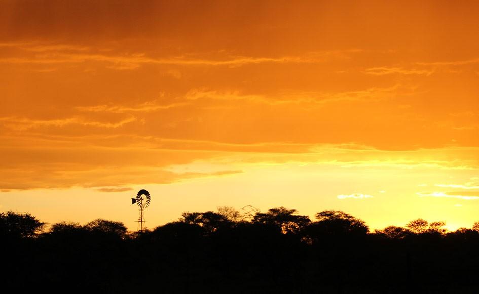 blog_coco_waterbergplateau_namibia_24