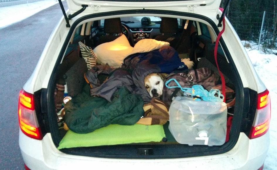 blog_coco_schweden_vaernen_camping03