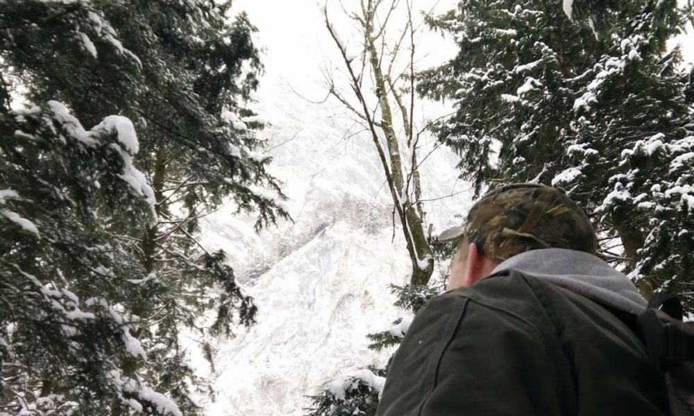 Reisen mit Hund – Wandern im Salzburger Land